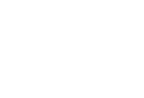 Roving CFOs